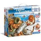ATELIERS DES FOSSILES