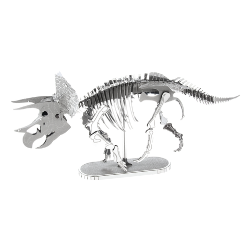 M EARTH SQUELETTE TRICERATOPS